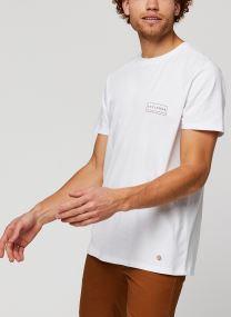 Vêtements Accessoires ARCY T-SHIRT