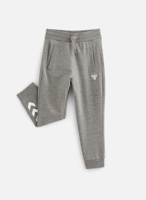 Vêtements Hummel Pless Pants Gris vue détail/paire