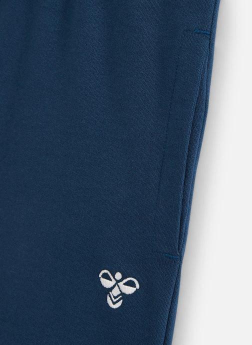 Vêtements Hummel Bassim Shorts Bleu vue portées chaussures