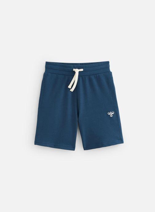 Vêtements Hummel Bassim Shorts Bleu vue détail/paire