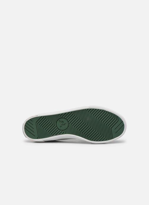 Sneaker Le Coq Sportif Verdon Plus M grün ansicht von oben