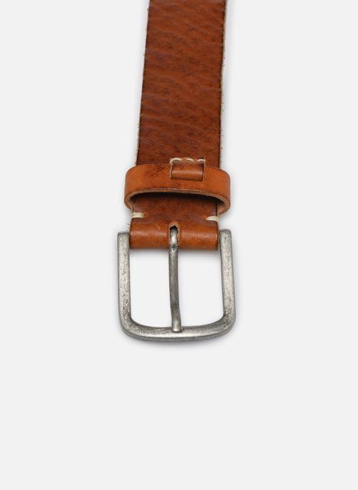 Belts Pepe jeans Warren Belt Brown model view