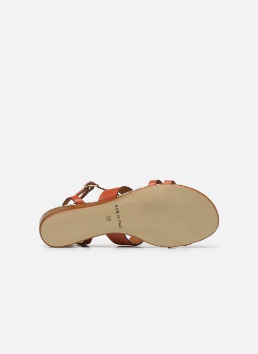 Sandales et nu-pieds Georgia Rose Liloute Marron vue portées chaussures