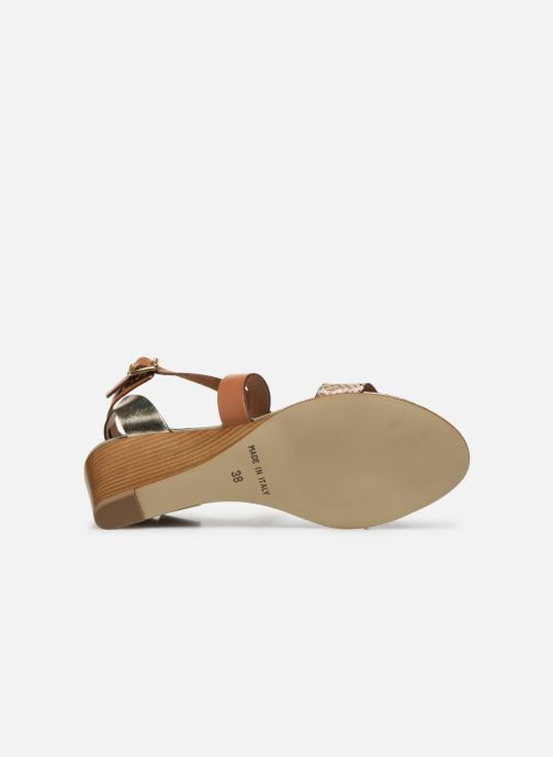 Sandali e scarpe aperte Georgia Rose Lipent Marrone immagine dall'alto