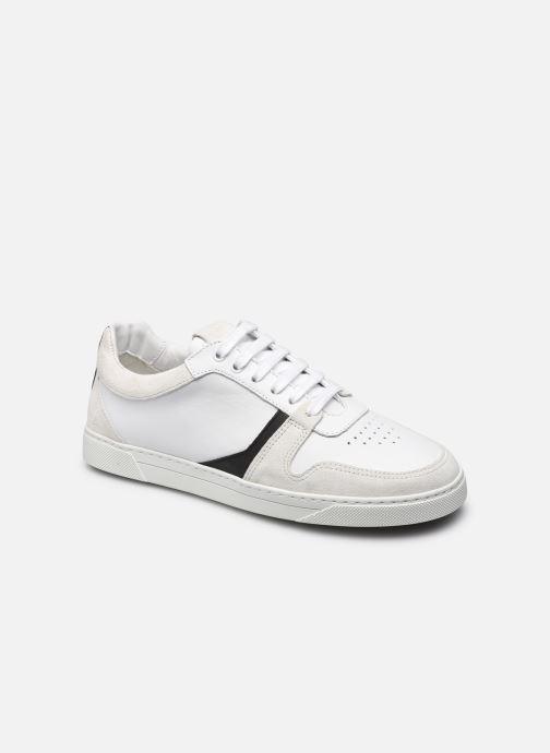 Sneakers Donna Glencoe W