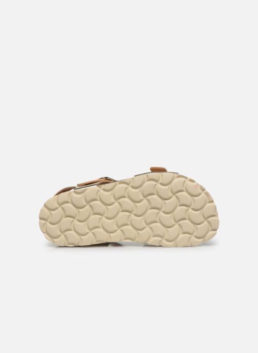 Sandales et nu-pieds Conguitos Metalizado Or et bronze vue haut