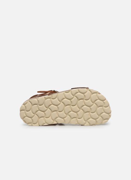 Sandales et nu-pieds Conguitos Metalizado Velcro Or et bronze vue haut