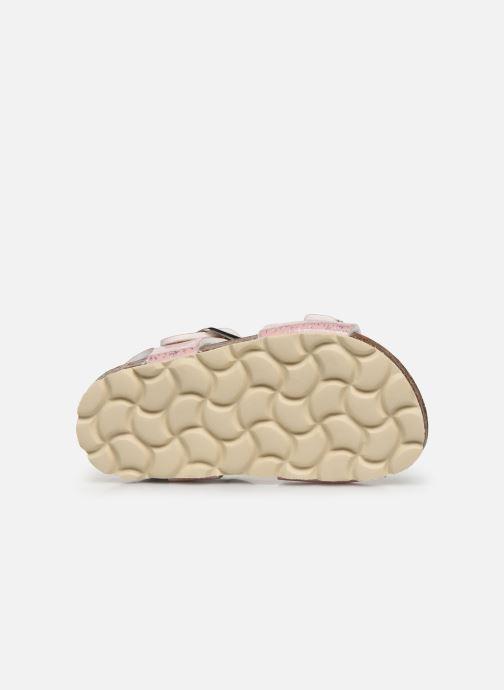 Sandalen Osito by Conguitos Chispeado rosa ansicht von oben