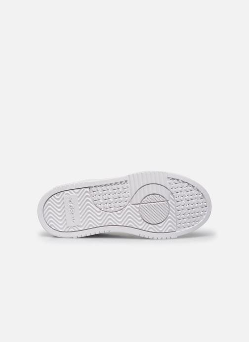 Sneaker adidas originals Supercourt C weiß ansicht von oben
