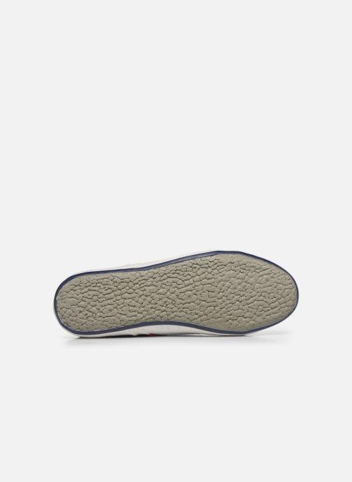 Sneakers Pepe jeans Aberman Half Bianco immagine dall'alto