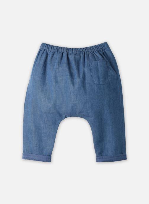 Vêtements Cyrillus Pantalon Casual Elias Bleu vue portées chaussures