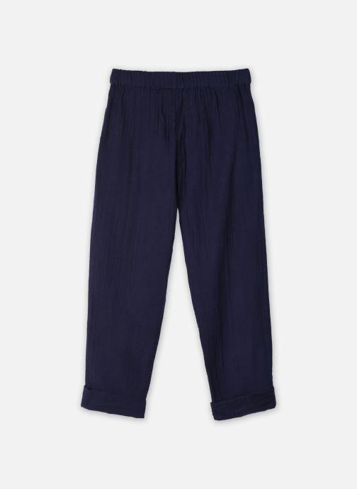 Vêtements Cyrillus Pantalon Casual Frida Bleu vue face
