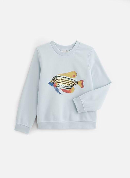 Vêtements Accessoires Sweatshirt Flavianna