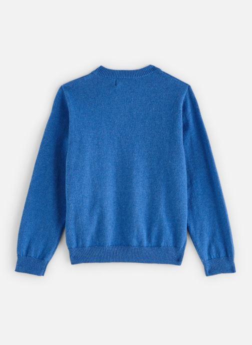 Vêtements Cyrillus Pull Gito Bleu vue bas / vue portée sac