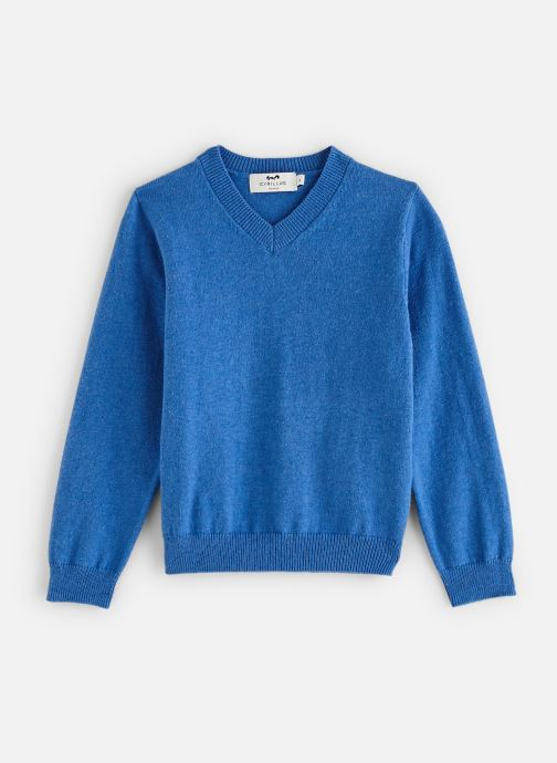 Vêtements Cyrillus Pull Gito Bleu vue détail/paire