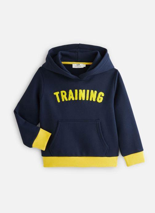 Vêtements Cyrillus Sweatshirt hoodie Guillem Bleu vue détail/paire