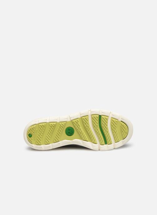 Sneakers Timberland Boltero Low w/Bungee Nero immagine dall'alto