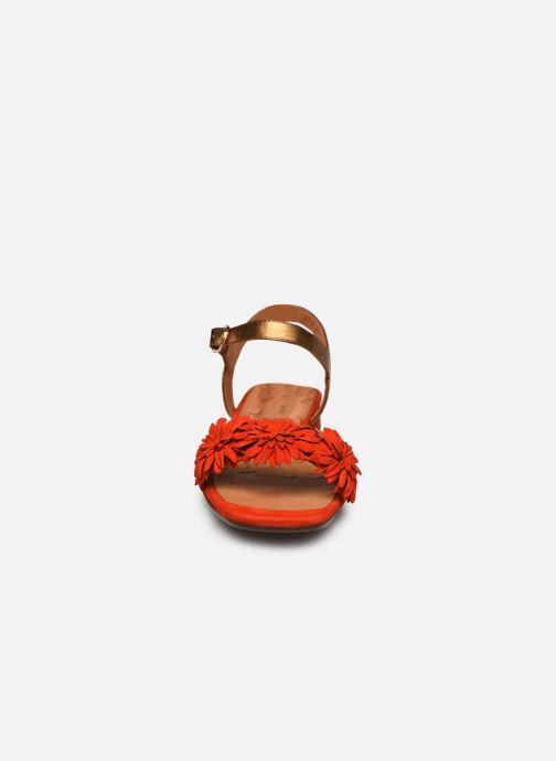 Sandales et nu-pieds Chie Mihara TALICO Orange vue portées chaussures