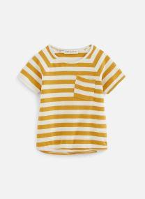 T-shirt raglan Stripe