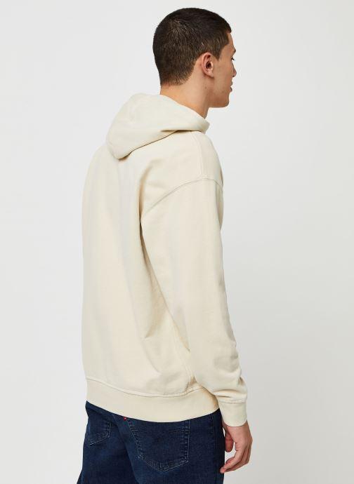 Vêtements Levi's AUTHENTIC PO HOODIE Blanc vue portées chaussures