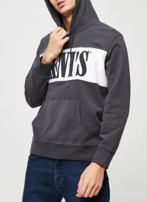 PIECED PULLOVER HOODIE FORGED IRON/ WHI