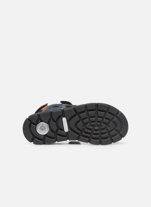 Sandali e scarpe aperte Primigi PTV 53926 Grigio immagine dall'alto