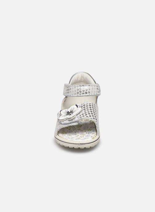 Sandali e scarpe aperte Primigi PSW 53652 Argento modello indossato