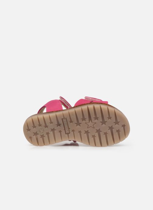 Sandali e scarpe aperte Primigi PJX 54200 Rosa immagine dall'alto