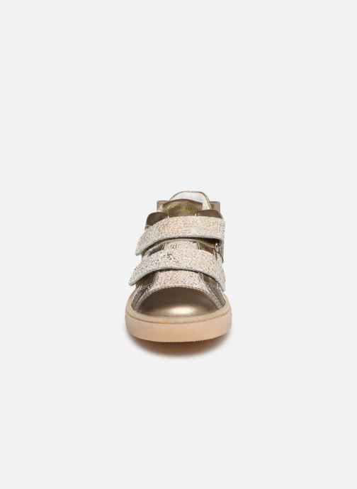 Baskets Primigi PMC 54277 Beige vue portées chaussures