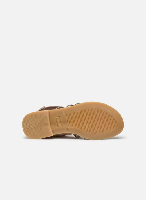 Sandali e scarpe aperte Primigi PFD 54398 Oro e bronzo immagine dall'alto