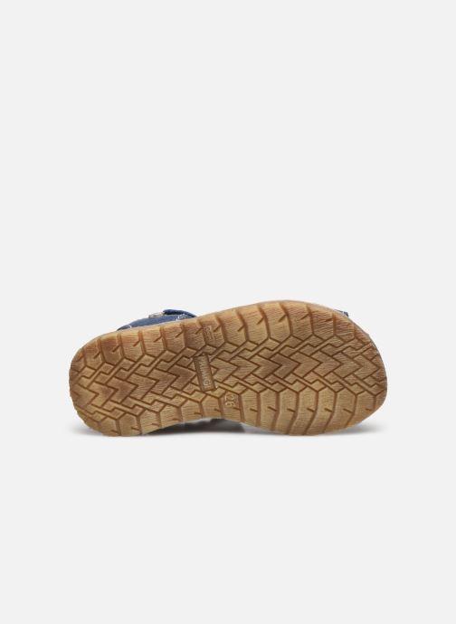 Sandales et nu-pieds Primigi PRR 54100 Bleu vue haut