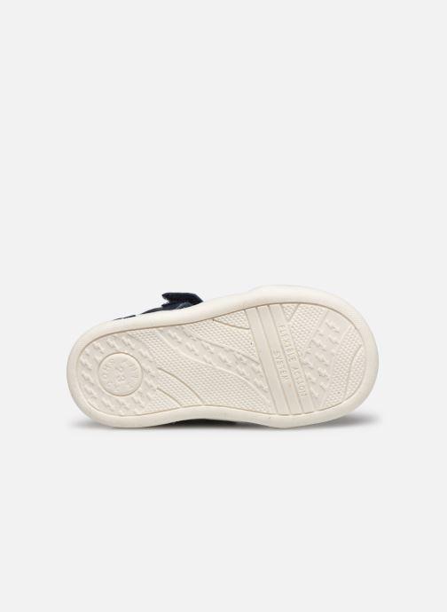 Sandali e scarpe aperte Primigi PLK 54038 Azzurro immagine dall'alto