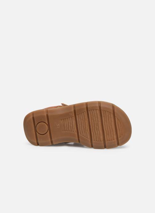 Sandales et nu-pieds Primigi PFP 54211 Marron vue haut