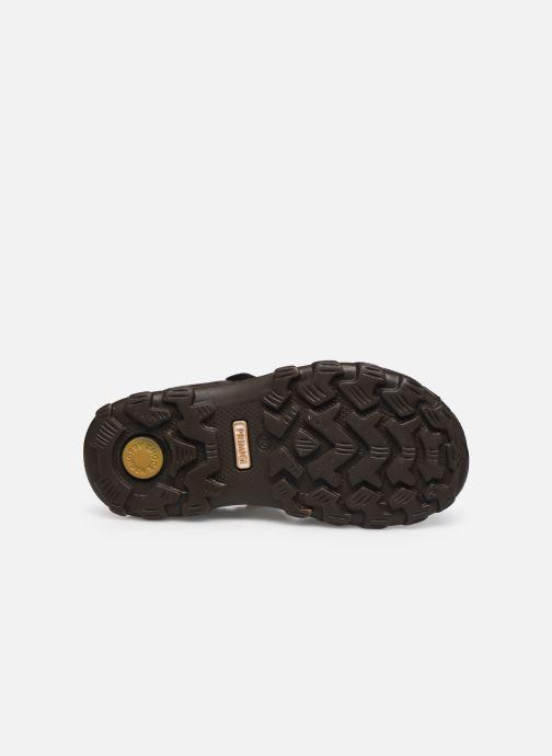 Sandales et nu-pieds Primigi PRA 53912 Marron vue haut
