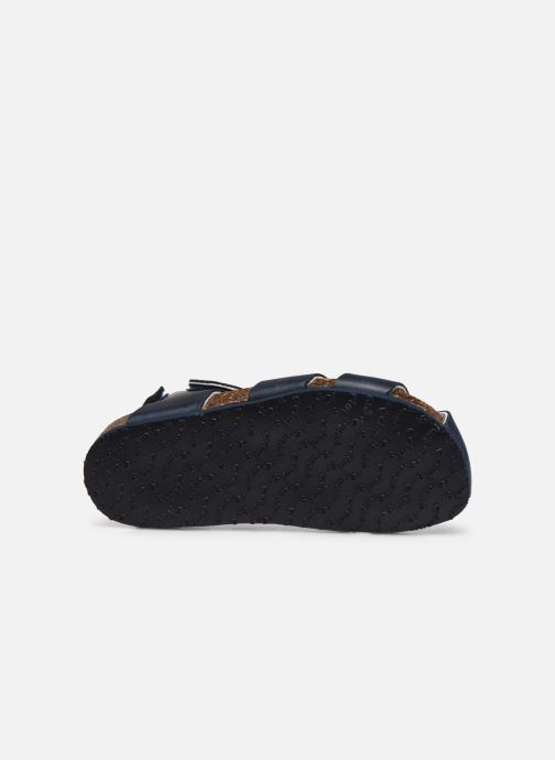Sandalen Primigi PBK 54252 Blauw boven