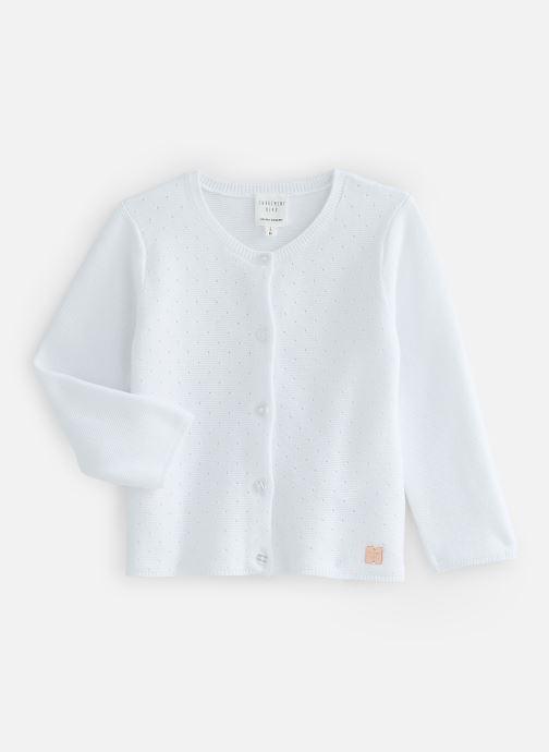 Vêtements Accessoires Y95209