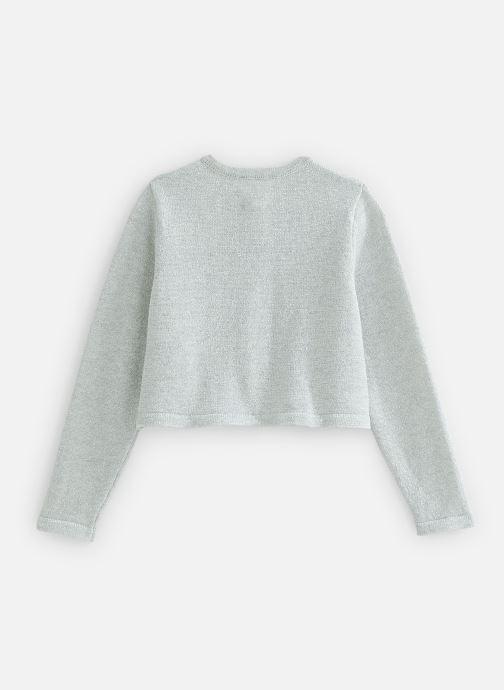 Vêtements CARREMENT BEAU Y15321 Gris vue bas / vue portée sac