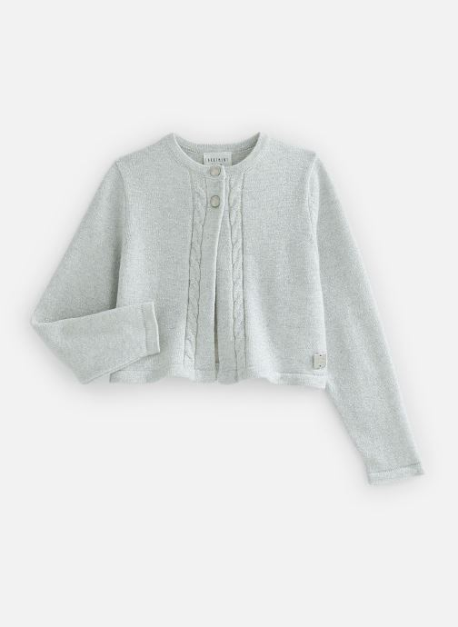 Vêtements CARREMENT BEAU Y15321 Gris vue détail/paire