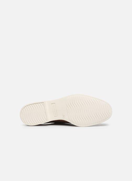 Zapatos con cordones Tamaris VIKTA Marrón vista de arriba