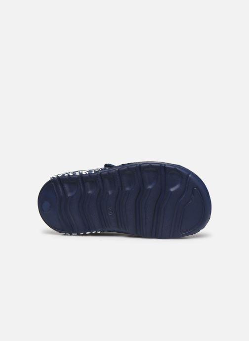 Sandales et nu-pieds Disney Animals Soucis Bleu vue haut