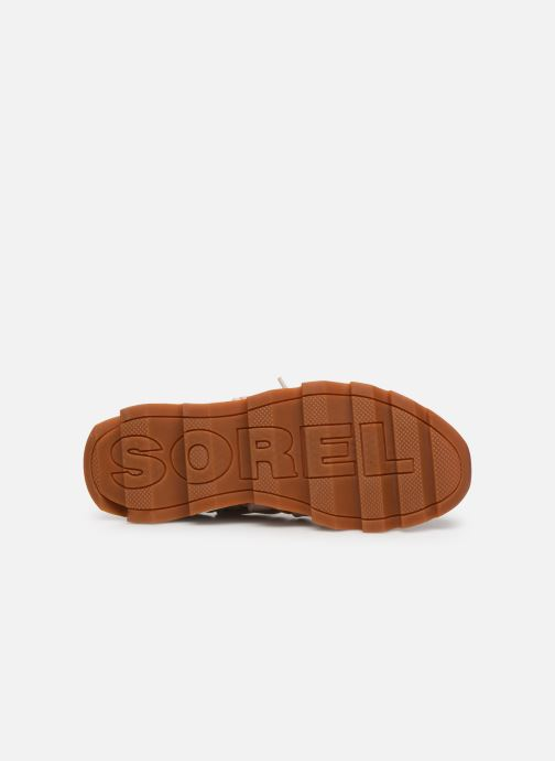 Deportivas Sorel Kinetic Lace Beige vista de arriba