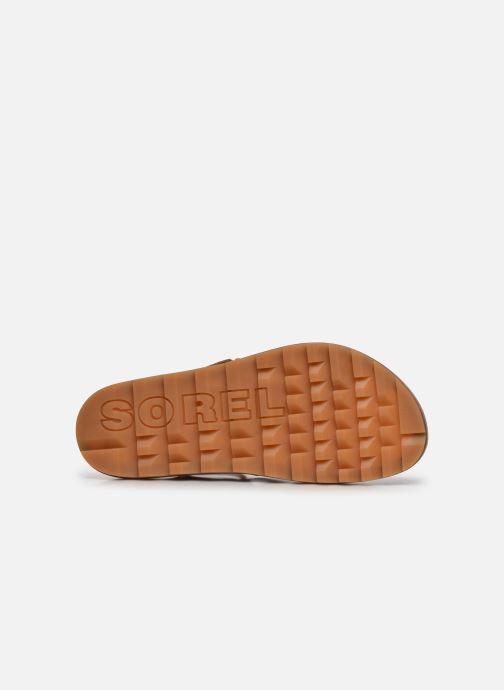 Sandales et nu-pieds Sorel Roaming T-Strap Marron vue haut