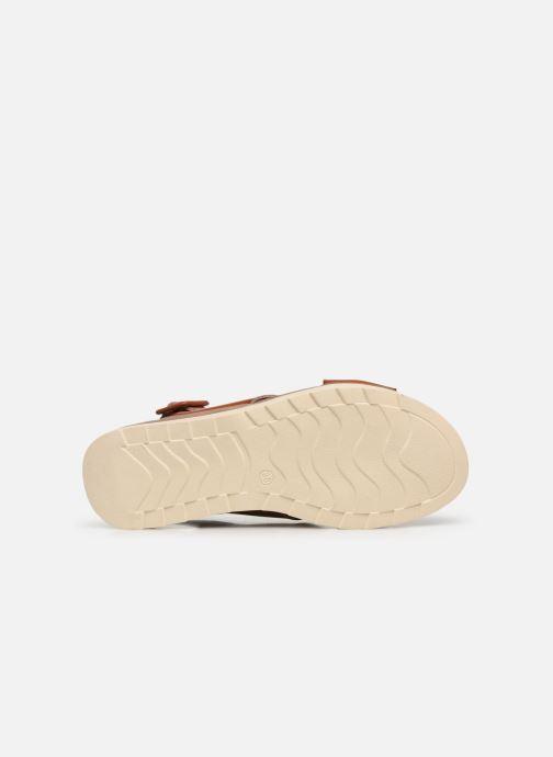 Sandales et nu-pieds Xti 49844 Marron vue haut