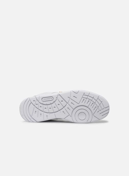 Baskets Lacoste Thrill 120 1 Us Sfa Blanc vue haut