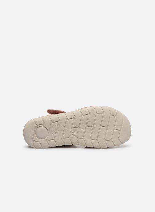 Sandali e scarpe aperte Xti Sandales / 57087 Beige immagine dall'alto