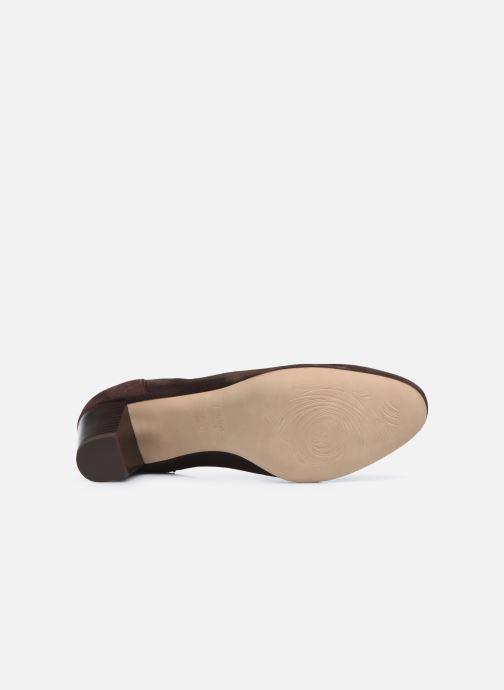 Zapatos de tacón Perlato 11517 Marrón vista de arriba