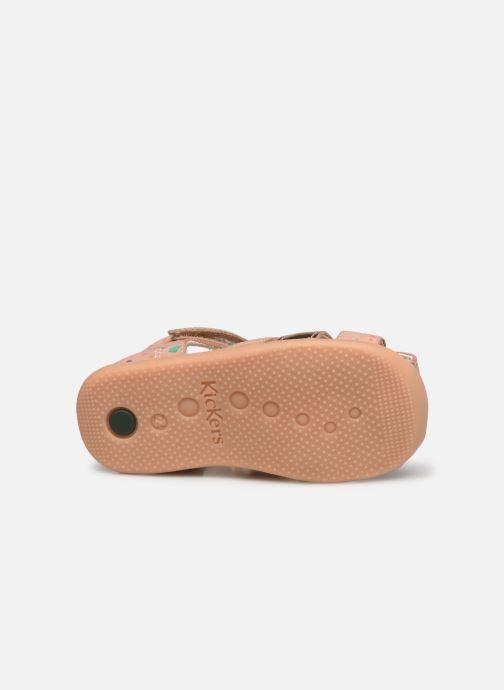Sandalen Kickers Bigflo-2 rosa ansicht von oben