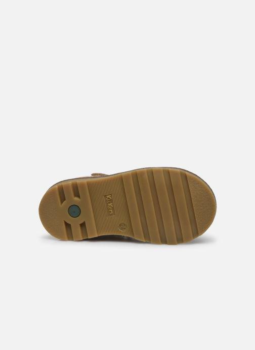 Sandales et nu-pieds Kickers Nonosta Gris vue haut