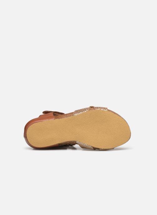 Sandalen Kickers Bobbun Bruin boven