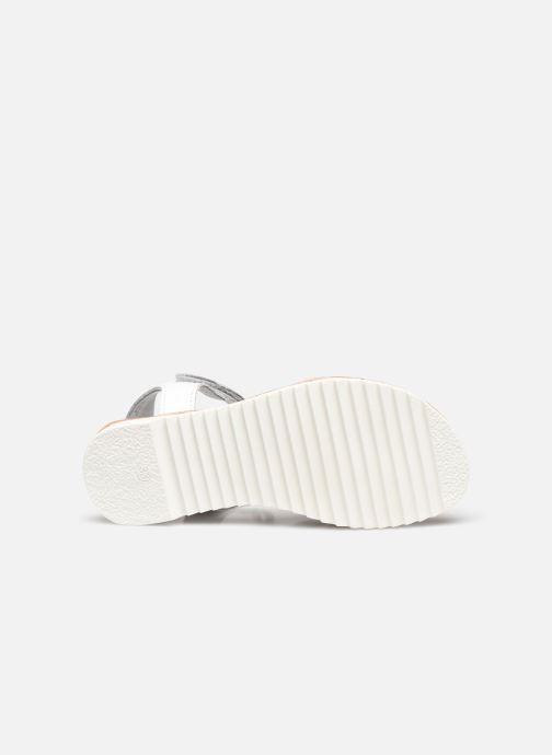 Sandali e scarpe aperte Kickers Sharkky Bianco immagine dall'alto